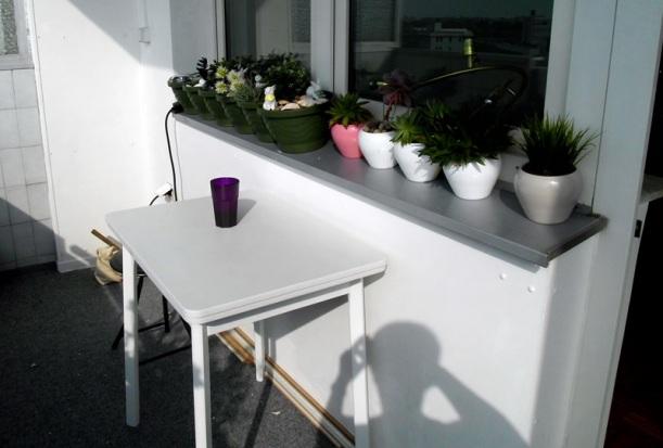 2408 Pflanzen Küchentisch