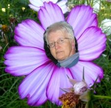 Brav und bieder im Blütenkranz