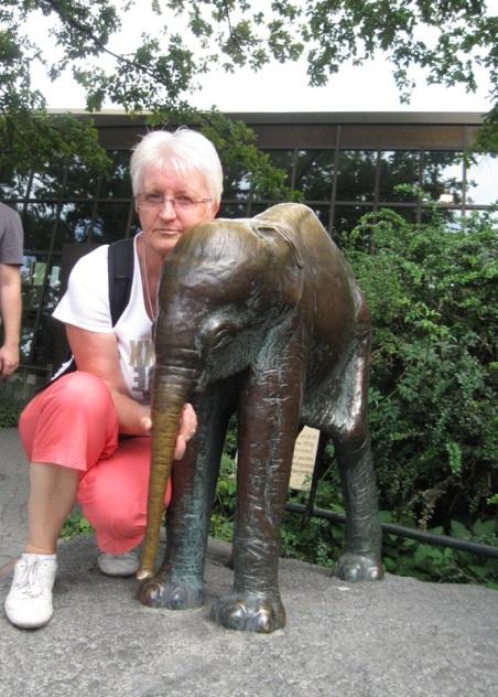 2211 Elefant 3