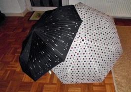2803 Regenschirmliebe 2