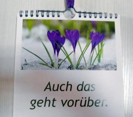 3003 Kalender von Lucie
