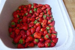 1505 Muttertag Erdbeeren 407
