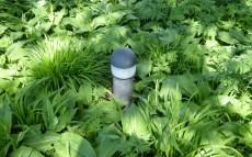 2105 Leuchtturm im Grünen 118
