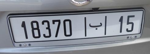 2307 P1030100-002