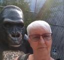 0408 2007 Zoo Affen Skulptur