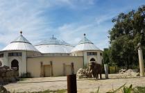 0408 2007 Zoo Elefanten 2