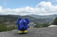 0109 Dumbo Armen Schweiz