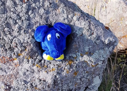 0109 Dumbo Felsen 08