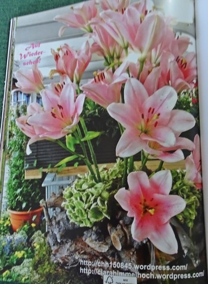 2107 FB Gartenschau 90