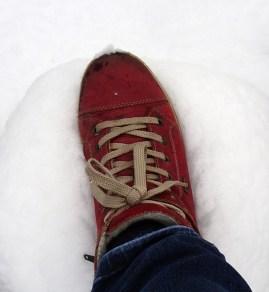 0102 Spuren im Schnee 97