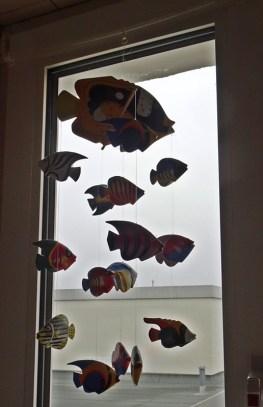 0703 4 Fische
