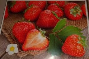 0903 4 Obst u Gemüse 1